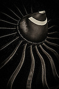Spinner and blades of a Rolls Royce Trent 895-17 jet engine, which powers Delta's Boeing 777's.