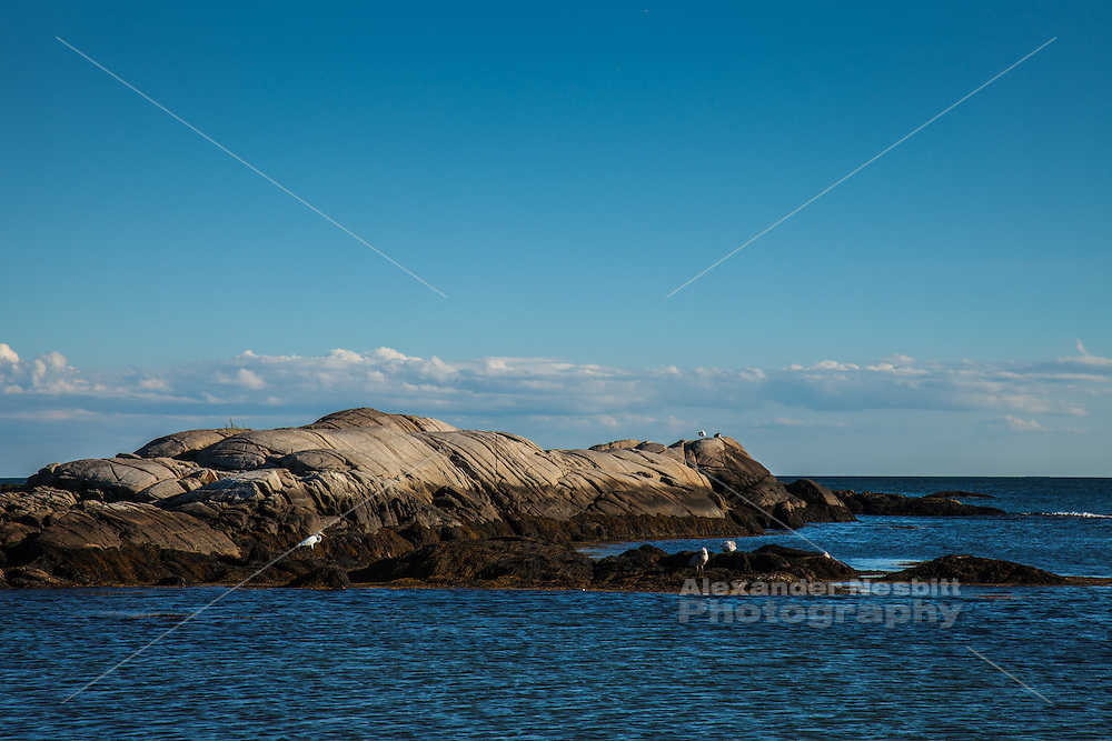 Newport, RI - Goosebery beach on a tranguil evening as sunset fades and a Heron explores the rocky island off shore