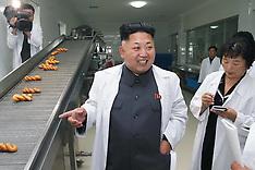 AUG 24 2014 Kim Jong Un