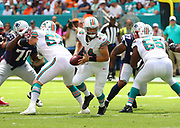 Sep 15, 2019; Miami Gardens, FL, USA;  Miami Dolphins quarterback Ryan Fitzpatrick (14) gets ready to hand off the ball during an NFL game against the New England Patriots at Hard Rock Stadium in Miami Gardens, FL. The Patriots beat the Dolphins 43-0. (Steve Jacobson/Image of Sport)