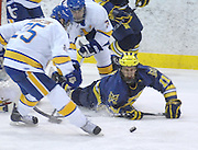 Michigan's Kevin Lynch goes down onto the ice in front of the LSSU net during the first period of the Wolverines Friday night game against the LSSU Lakers at Taffy Abel Arena in Sault Ste. Marie.