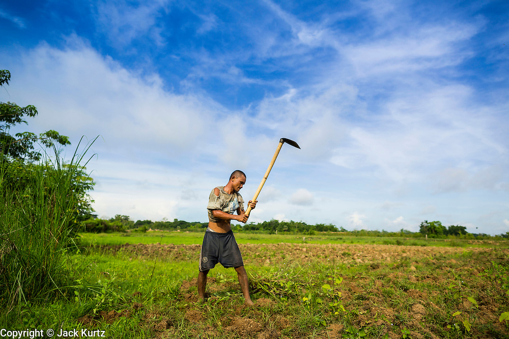 A farm worker uses a hoe to prepare a rice field for planting in the Irrawaddy Delta (or Ayeyarwady Delta) in Myanmar. The region is Myanmar's largest rice producer, so its infrastructure of road transportation has been greatly developed during the 1990s and 2000s. Two thirds of the total arable land is under rice cultivation with a yield of about 2,000-2,500 kg per hectare. FIshing and aquaculture are also important economically. Because of the number of rivers and canals that crisscross the Delta, steamship service is widely available.