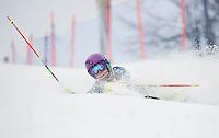 Gus Pitou Memorial Slalom race with Gunstock Ski Club.   (Karen Bobotas/for the Laconia Daily Sun)