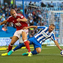 Brighton & Hove Albion v Nottingham Forest