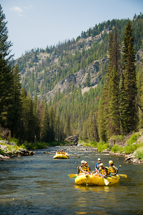 Idaho. Middle Fork Salmon River. Rafting through mountains with pine forest. MR