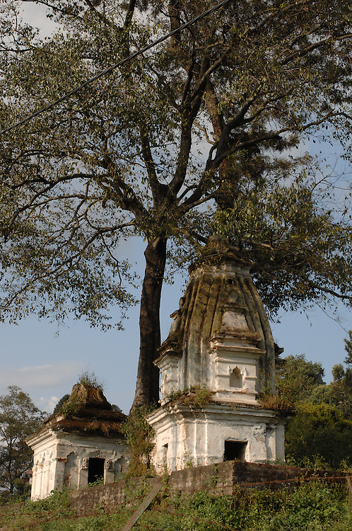 Small temples near a tree next to Pashupatinath Temple, in Kathmandu, Nepal.