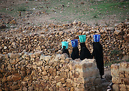 Yemen, Shahara, women in black walking in line with a bucket on their head to fetch water.