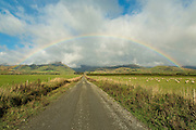 A rainbow graces the pastures at the foothills of the Takitimu Mountains, in Southland, New Zealand.