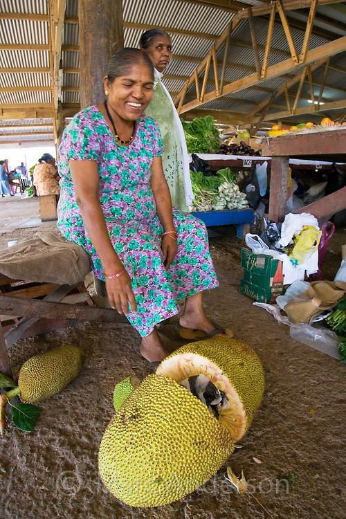 Indian woman selling breadfruit at fresh food market in Vanua Levu, Fiji..