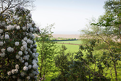 View out of the garden towards the countryside and Bristol Channel with Rhododendron 'Loder's White' AGM in the foreground