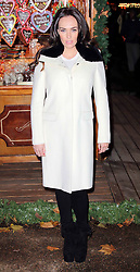 © Licensed to London News Pictures. 21/11/2013, UK.  Tamara Ecclestone. Hyde Park Winter Wonderland VIP Opening, Hyde Park, London UK, 21 November 2013. Photo credit : Richard Goldschmidt/Piqtured/LNP