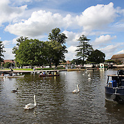 Rowing boats on the River Avon at Stratford-upon-Avon, a market town and civil parish in south Warwickshire, England. It lies on the River Avon. The town is a popular tourist destination owing to its status as birthplace of the playwright and poet William Shakespeare, receiving about 3 million visitors a year. The Royal Shakespeare Company resides in Stratford's Royal Shakespeare Theatre. Photo Tim Clayton