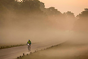 UNITED KINGDOM, London: 02 October 2015 A commuter cycles through a misty Richmond Park this morning as the sun rises on another beautiful Autumn morning. Rick Findler / Story Picture Agency