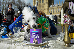 "© Licensed to London News Pictures. 10/03/2019. LONDON, UK. Dogs in Victoria Park Gardens, next to the Houses of Parliament, for ""Brexit is a Dog's Dinner"", a protest to urge MPs to vote to ensure that a no-deal Brexit is avoided and to give the people of the UK a final say.  Next week, there will be a series of up to three votes in the House of Commons where MPs will vote on whether to accept Theresa May's Brexit deal.  Photo credit: Stephen Chung/LNP"