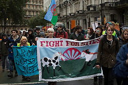 © licensed to London News Pictures. London, UK 19/10/2012. Protesters marching towards Department for Communities and Local Government in London to mark the first anniversary of the Dale Farm eviction. Photo credit: Tolga Akmen/LNP