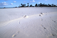 French Polynesia, Islands in the South Pacific, part of the French overseas Territories.Photo by Owen Franken..footprints in the sand On the island of Raniroa...Photo by Owen Franken