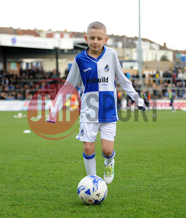 Bristol Rovers mascot - Mandatory by-line: Neil Brookman/JMP - 28/01/2017 - FOOTBALL - Memorial Stadium - Bristol, England - Bristol Rovers v Swindon Town - Sky Bet League One