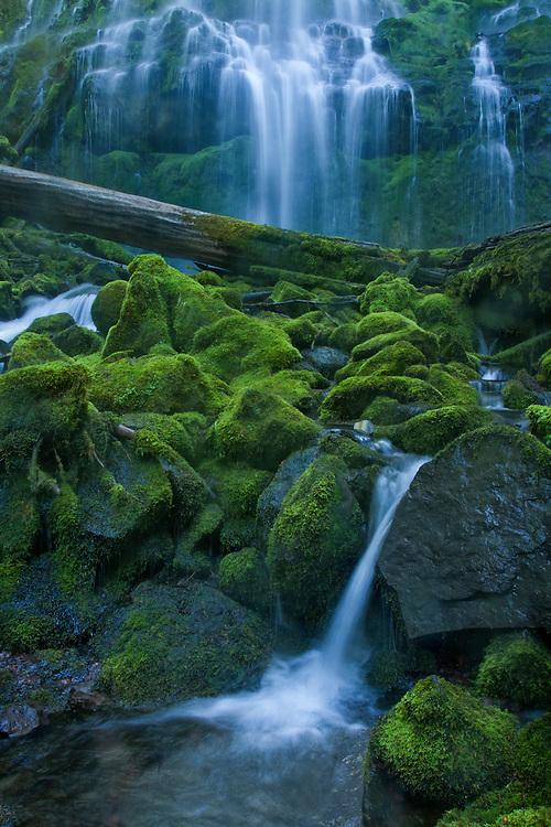 Proxy Falls, McKenzie Pass-Santiam Pass Scenic Byway