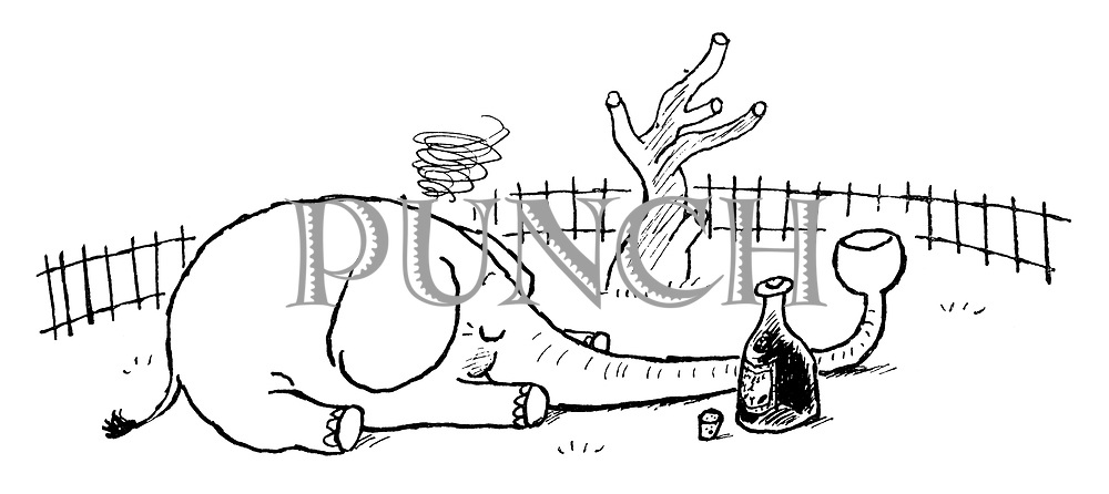 Alcohoffnung.  (A drunken elephant with a brandy glass shaped trunk)