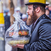 JERUSALEM - MARCH 13 : Ultra Orthodox man holding Mishloach Manot during Purim in Mea Shearim Jerusalem on March 13 2017 , Mishloach Manot is traditional food gifts given during Purim
