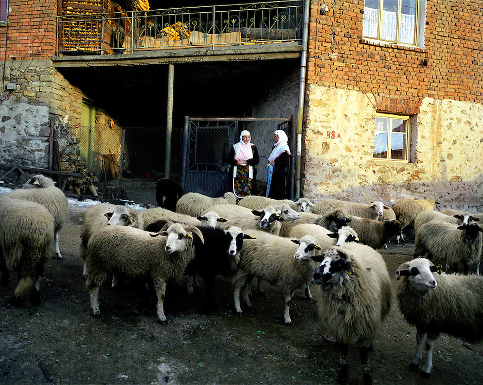 A couple of women chat in the late winter sun with their hands tucked into the aprons to keep warm, while a group of sheep await the arrival of their owner to let them in. Every afternoon the shepherd will bring the sheep back and the streets will fill with sheep making their way home.