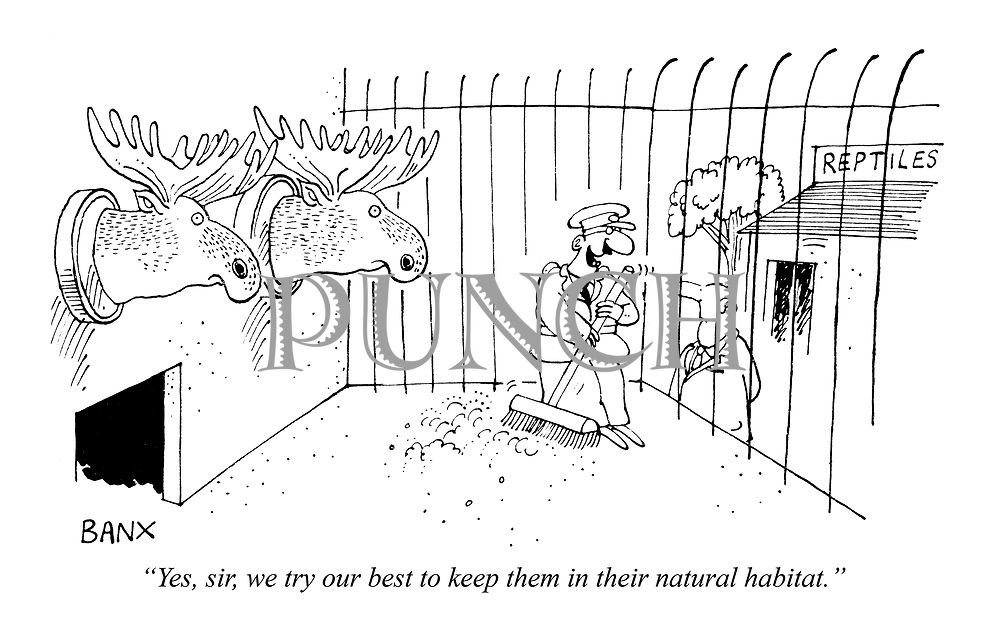 """""""Yes, sir, we try our best to keep them in their natural habitat."""""""