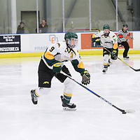 4th year forward Emma Waldenberger (9) of the Regina Cougars in action during the Women's Hockey home game on February 9 at Co-operators arena. Credit: Arthur Ward/Arthur Images