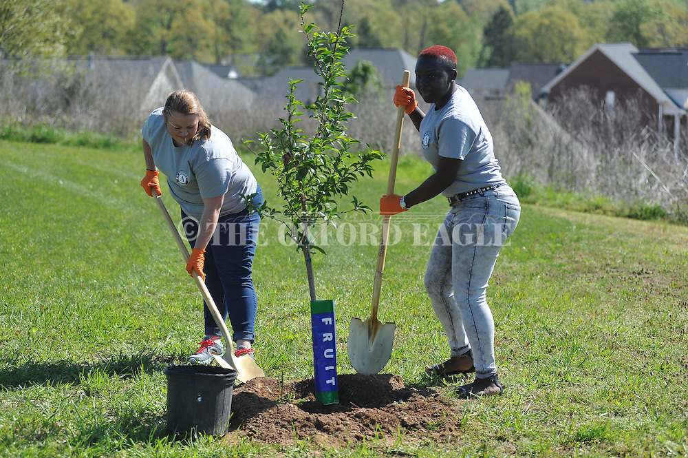 Hannah Griffin, left, and Jabria Tidwell were among volunteers who planted trees at Garden Terrace Park as part of the National Day of Service, in Oxford, Miss. on Tuesday, April 5, 2016.