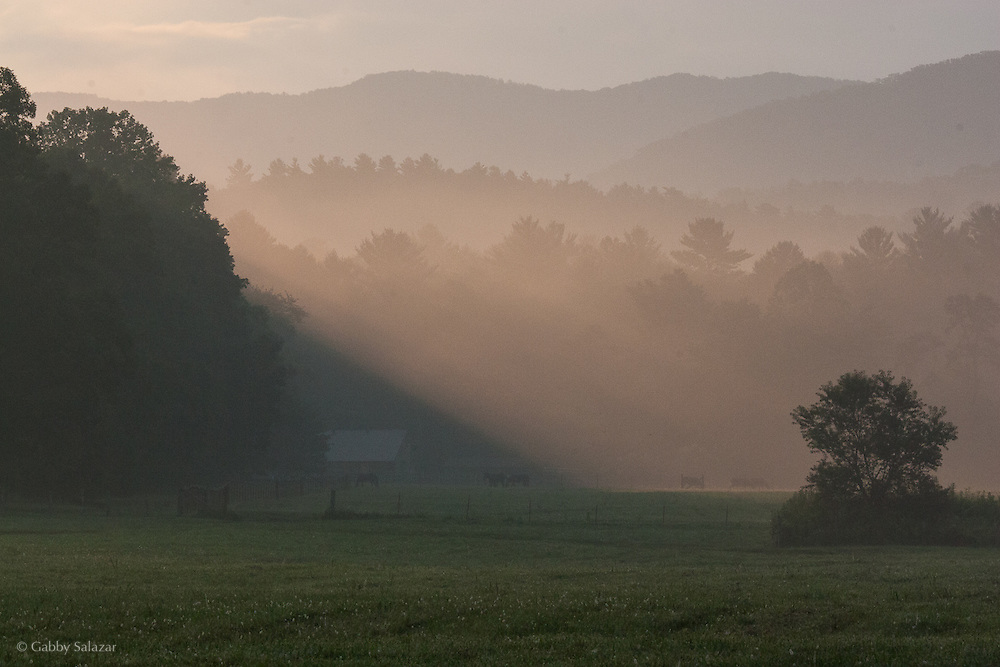 Cades Cove in Great Smoky Mountain National Park in Tennessee, USA.