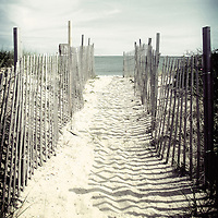 Walkway to the beach on Cape Cod in summer