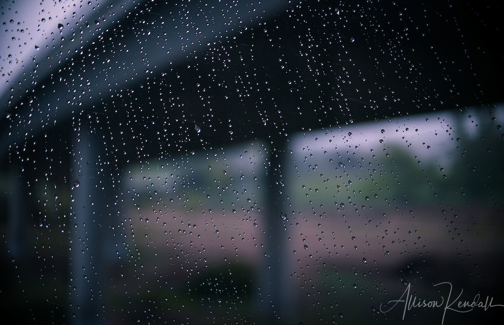Rain drops create a curtain of foreground texture and light, while a dark and brooding landscape passes in the background.