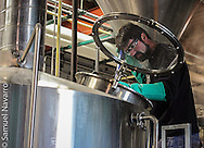 John Denny, 46, founder and master brewer of First Magnitude Brewing Company (FM) in Gainesville, Florida, works on the first batch of beer of the day Wednesday, January 28, 2015. (photo by Samuel Navarro)
