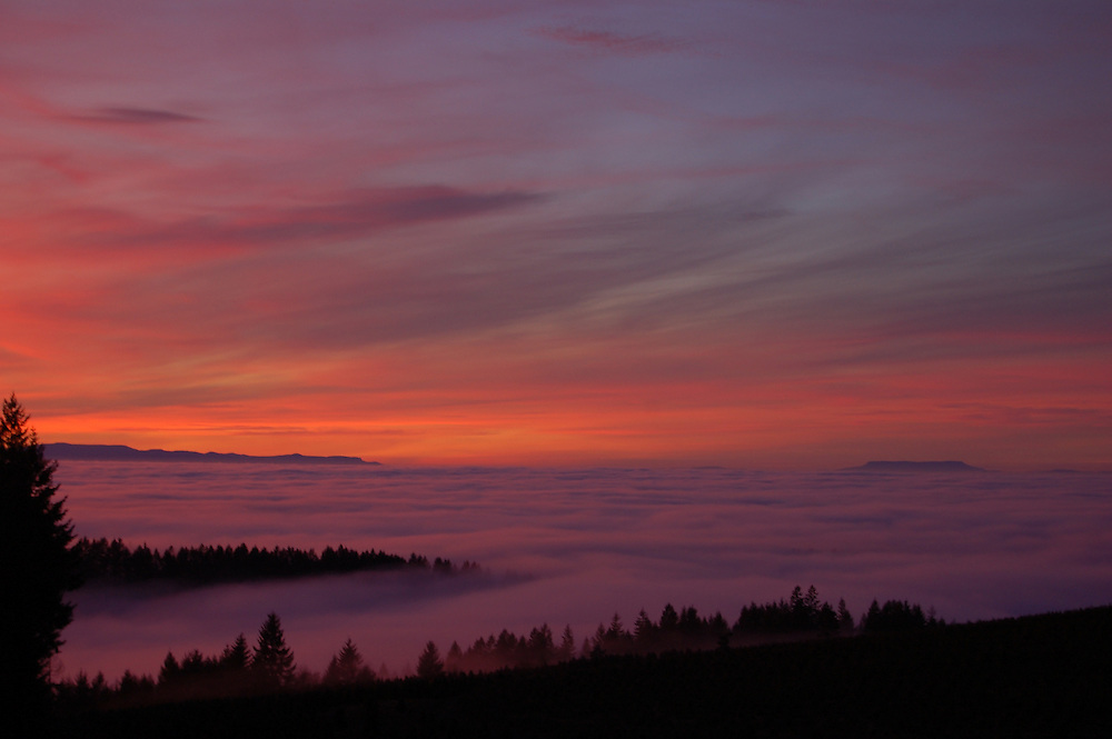 Sunset view from the south overlook in Silver Falls State Park
