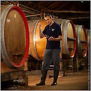 Winemaker, Tyrrells Winery, Hunter Valley, NSW, Australia
