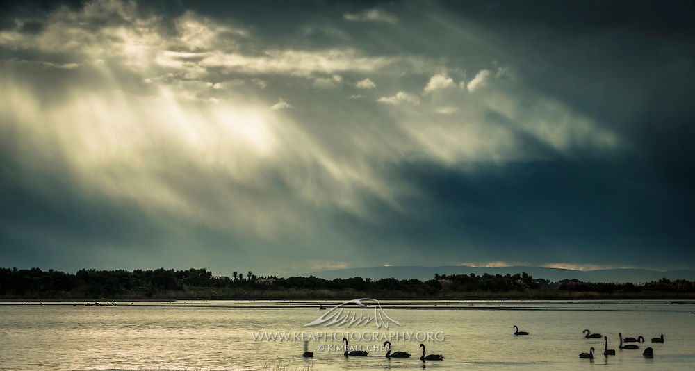 A southerly storm rapidly approaches over the Invercargill Estuary Walkway, in Southland, New Zealand.