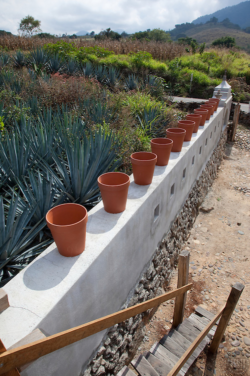 """""""Pots on a Wall 2"""" - These pots on a wall and agave plants were photographed near Puerto Vallarta, Mexico."""