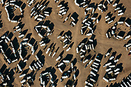 Aerial view of motorhomes parked in  Quartzsite, Arizona.  19 January 2008.