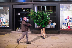 "© Licensed to London News Pictures . 16/12/2017. Manchester, UK. A man with a Christmas tree navigates his way along Deansgate . Revellers out in Manchester City Centre overnight during "" Mad Friday "" , named for historically being one of the busiest nights of the year for the emergency services in the UK . Photo credit: Joel Goodman/LNP"