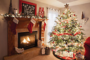 Home decorated for Christmas. Photo by Brandon Alms Photography
