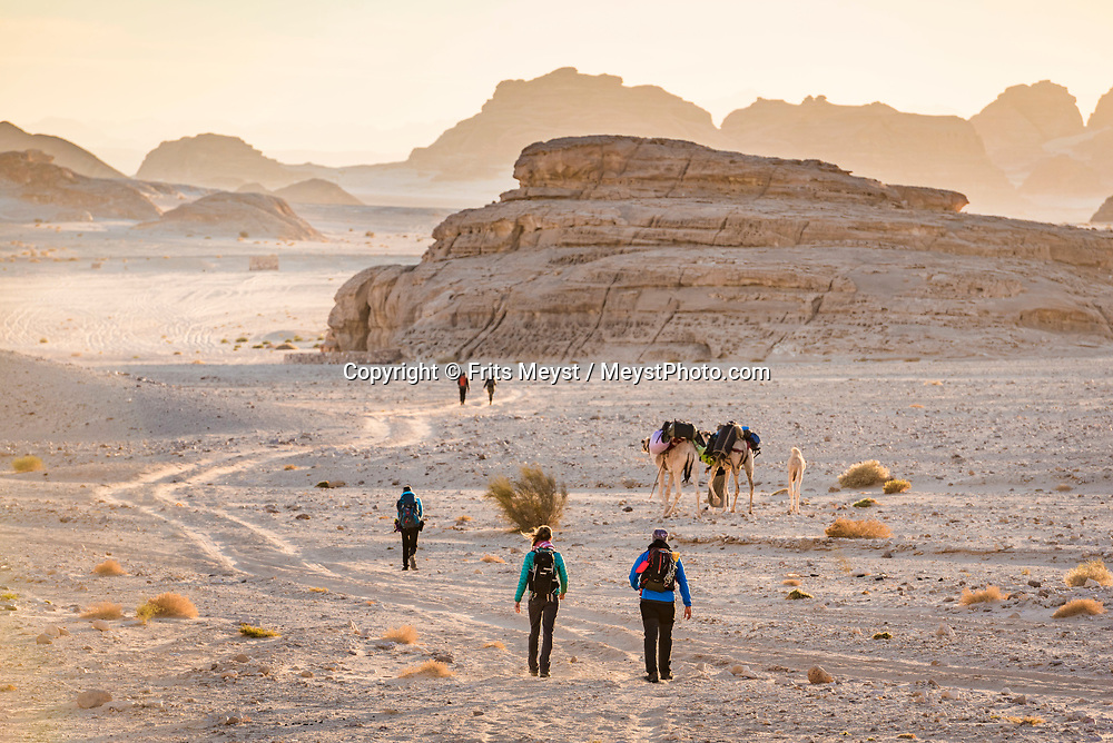 Sinai, Egypt, December 2018. Angayb El Shee pass while hiking with the Tarabin Tribe through the Sinai Desert Coastal Ranges. The Sinai Trail is Egypt's 1st long distance hiking trail, running 230km from the Gulf of Aqaba to the top of the Sinai's highest mountain. It connects old trade, travel and pilgrimage routes through one of the Middle East's most iconic desert wildernesses and is managed by a cooperative of three Bedouin tribes. Photo by Frits Meyst / MeystPhoto.com