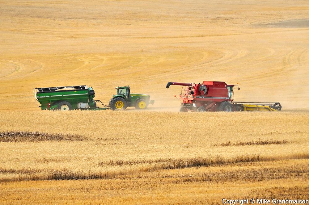 Combine harvesting durum wheat with grain cart<br /> Carmichael<br /> Saskatchewan<br /> Canada
