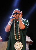 City Parks SummerStage Presents Slick Rick & Chuck Chillout