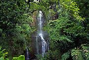 Wailua Falls, Hana Coast, Hana, Maui, Hawaii, USA<br />