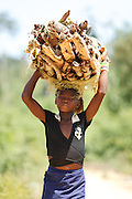 A girl carries a bundle of firewood on her head in the village of Popoko, Bas-Sassandra region, Cote d'Ivoire on Tuesday March 6, 2012.