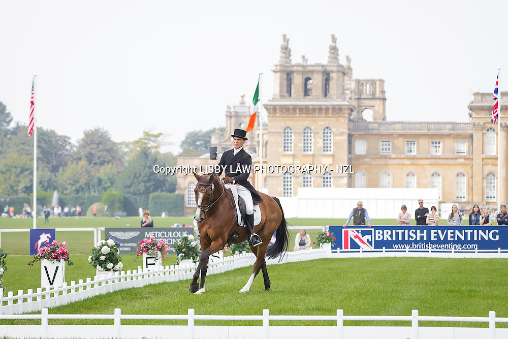 NZL-Blyth Tait (XANTHUS III) INTERIM-=30TH: CCI3* FIRST DAY OF DRESSAGE: 2014 GBR-Blenheim Palace International Horse Trial (Thursday 11 September) CREDIT: Libby Law COPYRIGHT: LIBBY LAW PHOTOGRAPHY - NZL