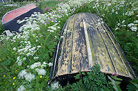 Wooden boats laying on the sea shore on the Rödlöga island. Stockholm Archipelago, Sweden