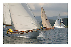 Clio, a 46' Sloop built in 1926, racing under genoa with Sunshine and Moonbeam in the West Kyle...This the largest gathering of classic yachts designed by William Fife returned to their birth place on the Clyde to participate in the 2nd Fife Regatta. 22 Yachts from around the world participated in the event which honoured the skills of Yacht Designer Wm Fife, and his yard in Fairlie, Scotland...FAO Picture Desk..Marc Turner / PFM Pictures