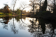 Autumns reflections in the lake at the Savill Garden, Windsor Great Park, Windsor, Berkshire, UK