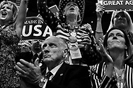 Delegates of the Republican party hear as they listen to House Speaker Paul Ryan during the Republican National Convention on Tuesday, July 19, 2016, in Cleveland.
