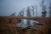 Duck Camp Sunday, Oct. 21, 2012, in Au Gres, Michigan.<br /> Photo by Scott Morgan 2012